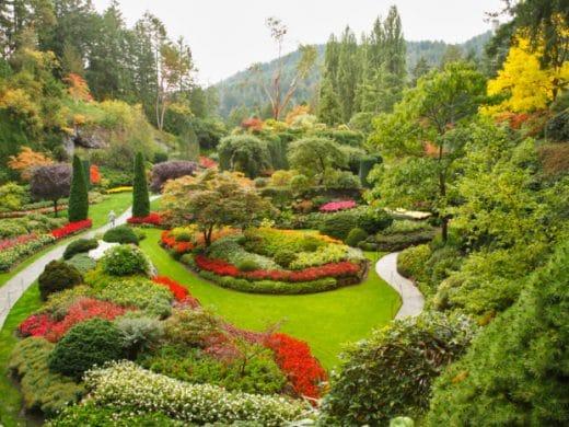садово парковый дизайн111111